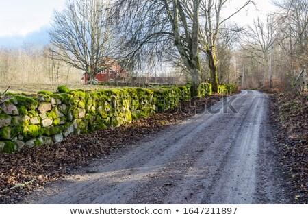 Grintweg steen muren voorjaar oude Stockfoto © olandsfokus