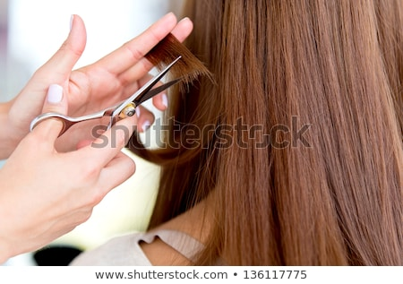 Hairdresser Cutting Hair Ends Stock photo © arenacreative