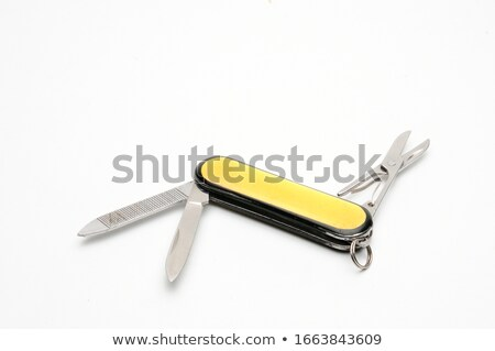 Small toothed pliers isolated Stock photo © michaklootwijk