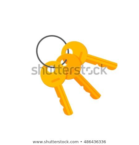 3D · hangslot · sleutels · 3d · render · veiligheid · slot - stockfoto © tashatuvango