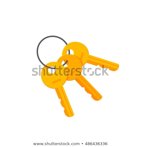 Keys to Safety. Concept on Golden Keychain. Stock photo © tashatuvango