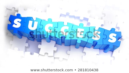 Fortune - White Word on Blue Puzzles. Stock photo © tashatuvango