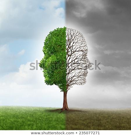 Diagnóstico depresión médicos verde borroso texto Foto stock © tashatuvango