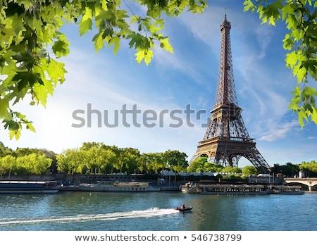 Eifel Tower with tree Stock photo © vwalakte