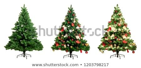 güzel · Noel · yıl · güzel · bir · kadın · noel · ağacı · beyaz - stok fotoğraf © dash