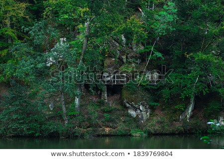 A high stonewall with trees Stock photo © bluering