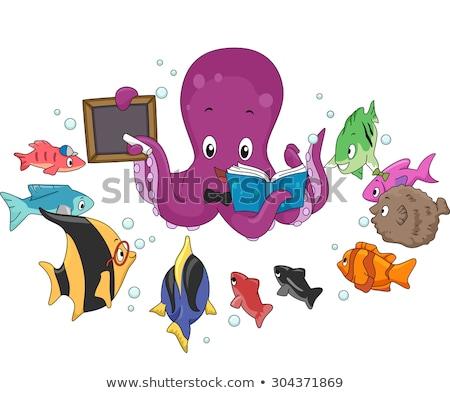 タコ 教師 魚 実例 教育 学校 ストックフォト © lenm
