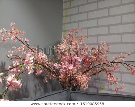 A pink flowervase with flowers Stock photo © bluering