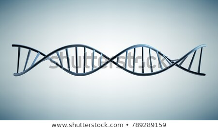 Digital 3d model of DNA structure Stock photo © klss
