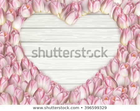 tulips heart shape frame eps 10 stock photo © beholdereye