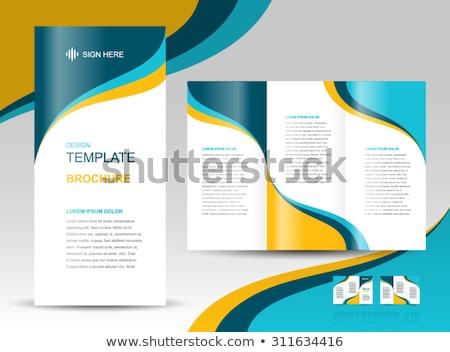 Onda estilo vetor folheto projeto abstrato Foto stock © SArts