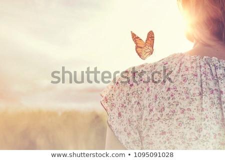 Dziewczyna motyle ilustracja dzieci wygaśnięcia sylwetka Zdjęcia stock © adrenalina