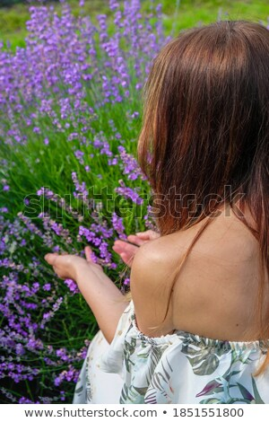Vertical image of woman near the flower bush Stock photo © deandrobot
