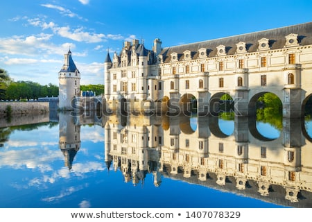 Chenonceaux chateau, Loire Valley, France Stock photo © phbcz