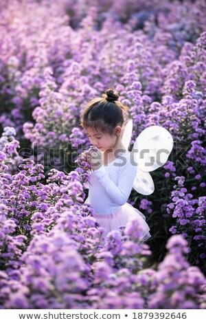 Kid Mädchen Schmetterling Geruch Blume Illustration Stock foto © lenm