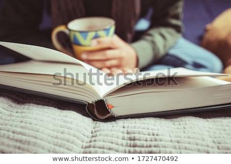 közelkép · olvasó · olvas · könyv · otthon · közelkép - stock fotó © 2Design
