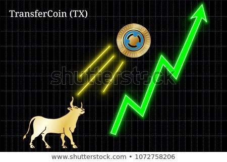 Valuta érme vektor piktogram kép izolált Stock fotó © tashatuvango