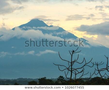 Vulcão Guatemala pássaro Foto stock © THP