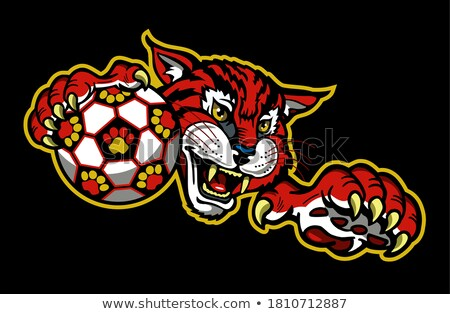 Wildcat Holding Soccer Football Ball Mascot Stock photo © Krisdog