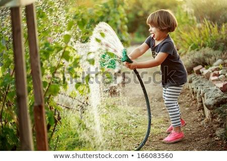 Kid Girl Garden Plot Stock photo © lenm