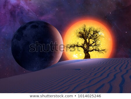 lunar eclipse with red shining moon Stock photo © LianeM