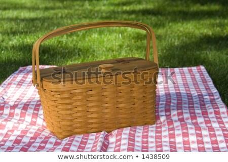 Piknik çim kırmızı masa örtüsü sepet sağlıklı gıda Stok fotoğraf © Illia