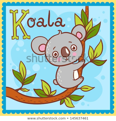 cartoon koala with branch for k alphabet letter stock photo © robuart