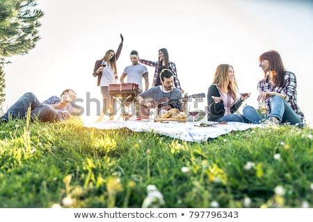 Amigos guitarra toalha de piquenique parque amizade lazer Foto stock © dolgachov