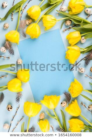 Eieren nest gele bloemen Pasen wenskaart top Stockfoto © karandaev