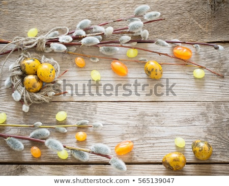 Quail eggs on pink background with willow branch. stock photo © Illia