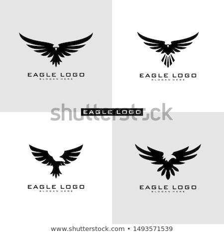 establecer · patrón · vuelo · águila · eps - foto stock © netkov1