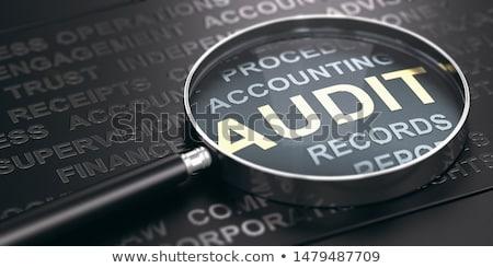 Pénzügyi megvizsgál cég könyvelés lemezek pecsét Stock fotó © olivier_le_moal
