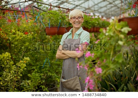 View at good looking senior woman working with spring flowers in Stock photo © boggy