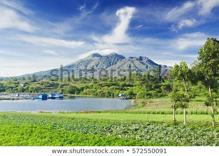 Krajobraz wulkan bali wyspa Indonezja niebo Zdjęcia stock © galitskaya
