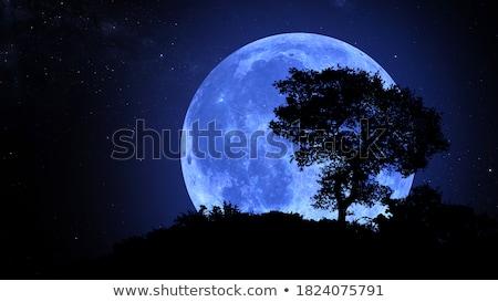 月 丘 有名な アーチ 山 旅行 ストックフォト © craig