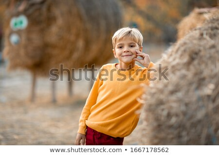 A child in a yellow sweater stands near a haystack Stock photo © ElenaBatkova