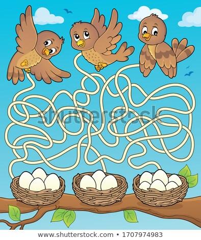 лабиринт птиц весны счастливым яйца животного Сток-фото © clairev