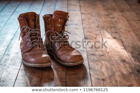 Haveloos leder schoenen bruin bogen vrouw Stockfoto © olgaaltunina