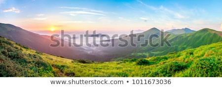 Autumn misty morning mountain panorama Stock photo © wildman