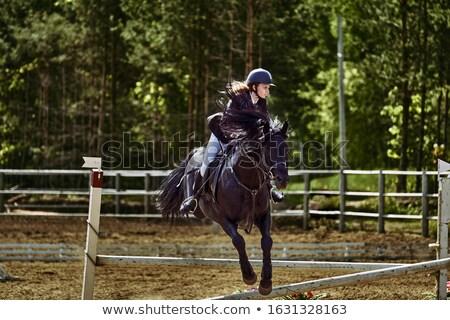 Young female jockey Stock photo © photography33