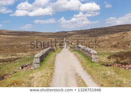 Rannoch Moor with small stream Stock photo © prill