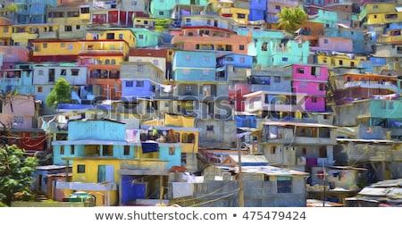 Couleurs Haïti manteau bras carte pavillon Photo stock © perysty