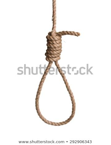 hangmans rope noose isolated on white Stock photo © leeavison