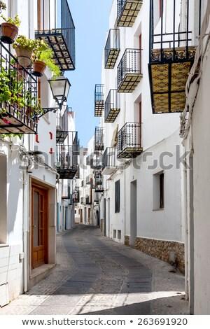 Krajobraz miasta urban scene Walencja Hiszpania Europie domu Zdjęcia stock © lunamarina