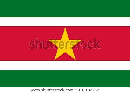 флаг Суринам иллюстрация дизайна искусства Сток-фото © claudiodivizia