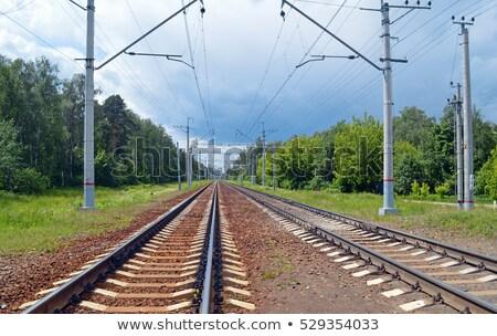 two railroad to horizon Stock photo © mycola