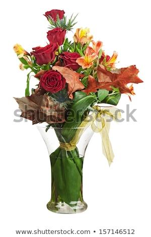 Gyönyörű piros váza izolált fehér virág Stock fotó © tetkoren