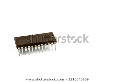 Velho microprocessador isolado branco tecnologia fundo Foto stock © jonnysek