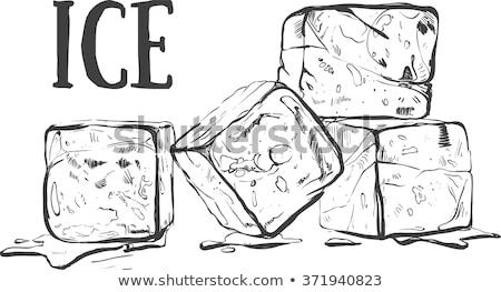 Ice · Cube · перец · изолированный · белый · аннотация · свет - Сток-фото © givaga