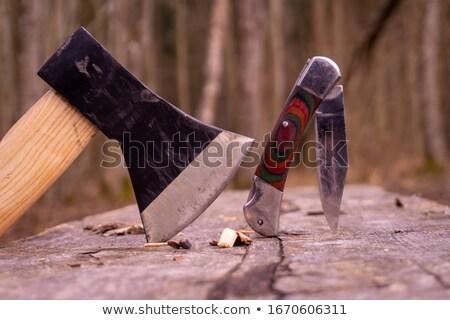 Stock photo: sharp tool